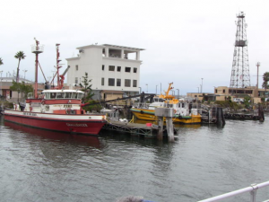 One of the fire boats and a pilot boat.